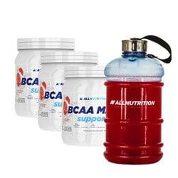 3x BCAA Max Support + Kanister - 3x500g+1szt