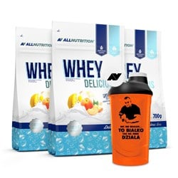 3x WHEY DELICIOUS PROTEIN + SHAKER