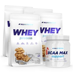 4x WHEY PROTEIN + BCAA MAX SUPPORT