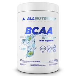BCAA MAX SUPPORT INSTANT