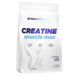 Creatine Muscle Max - 1000g