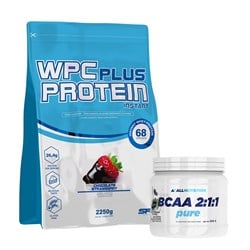 KD-SFD WPC Protein Plus + Allnutrition BCAA 2:1:1