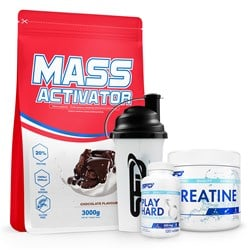 Mass Activator+Creatine+Play Hard Testosterone Booster+Shaker