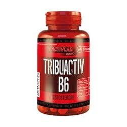 Tribuactive B6