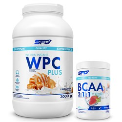 WPC PROTEIN PLUS 3000g + BCAA 2:1:1 INSTANT 400g